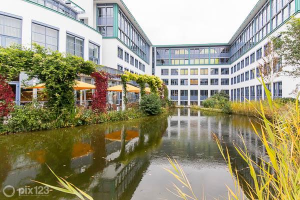 Google Business Street View Trusted Frankfurt Thomas